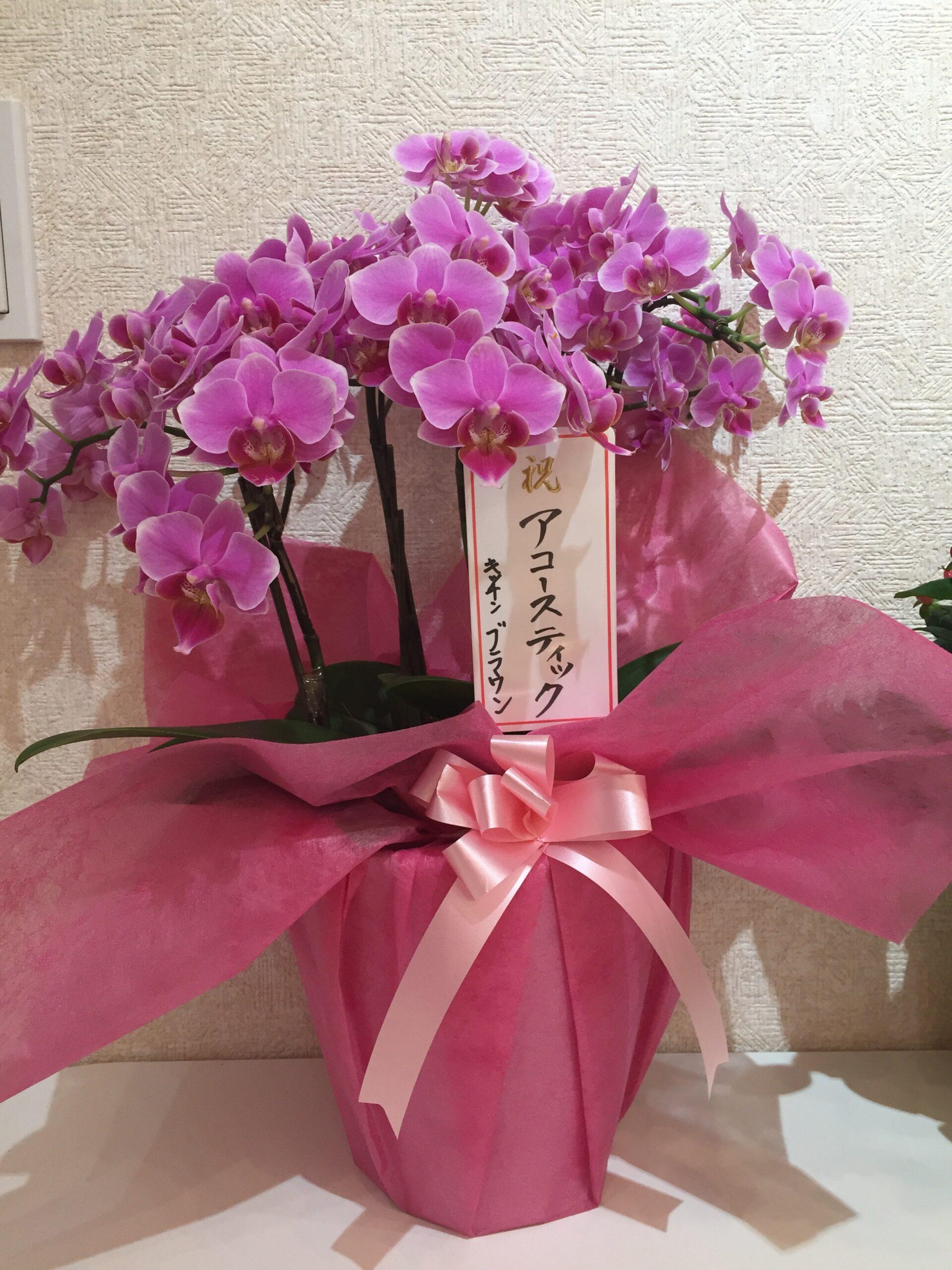 ブラウンさんからのお花